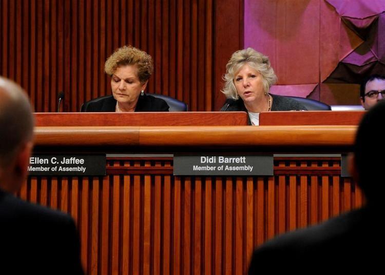 Didi Barrett New York State Assembly Didi Barrett