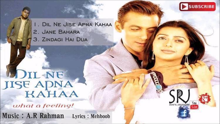 Dil Ne Jise Apna Kahaa Jukebox 2004 A R Rahman YouTube