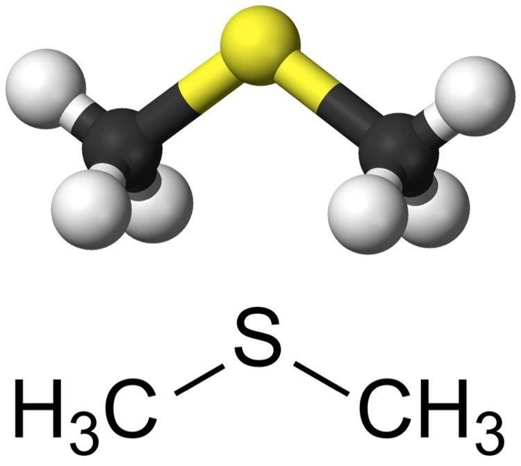 Dimethyl sulfide - Alchetron, The Free Social Encyclopedia
