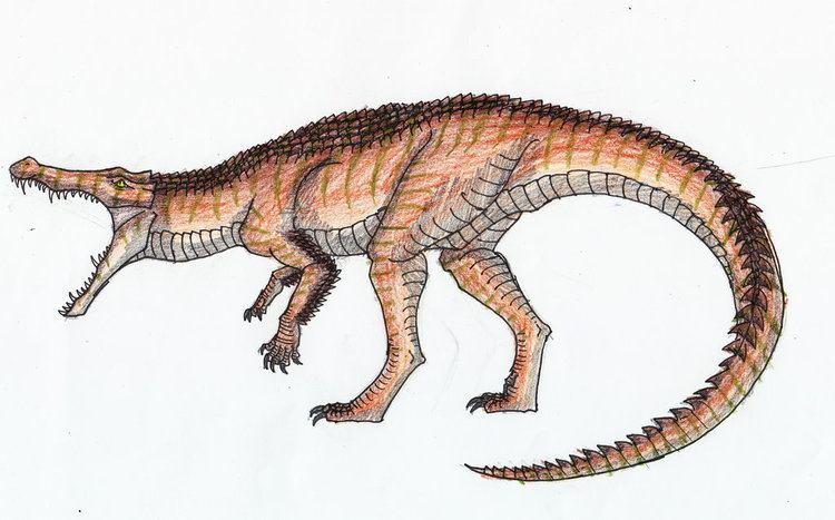 Dinocroc dinocroc by ropen7789 on DeviantArt