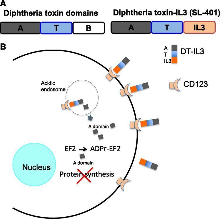 Diphtheria toxin Targeted diphtheria toxin to treat BPDCN Blood Journal