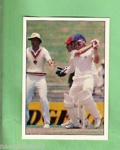 1985 SCANLENS CRICKET STICKER 27 DIRK WELLHAM AUSTRALIA
