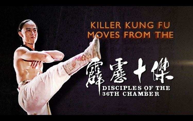 Disciples of the 36th Chamber Killer Kung Fu Moves From The Disciples Of The 36th Chamber YouTube