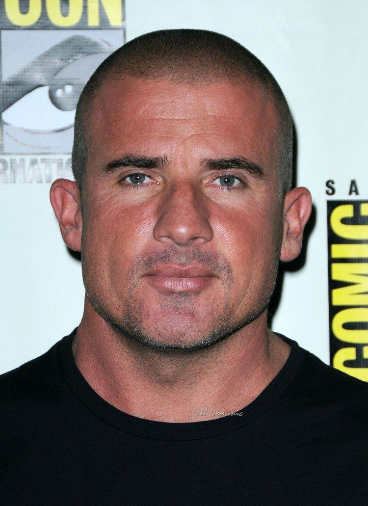 Dominic Purcell Quotes by Dominic Purcell Like Success