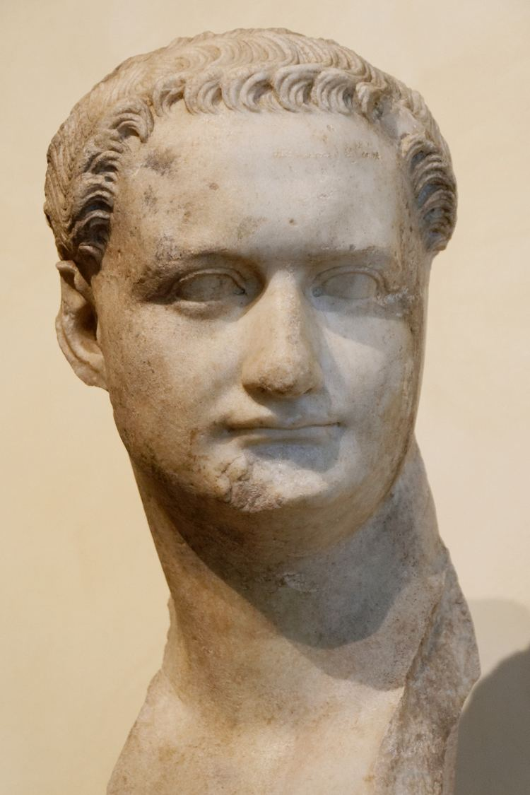 Domitian httpsuploadwikimediaorgwikipediacommons99