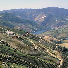 Douro httpswwwvisitportugalcomsiteswwwvisitportu
