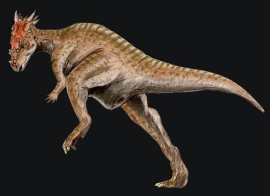 Dracorex Dracorex Pictures amp Facts The Dinosaur Database