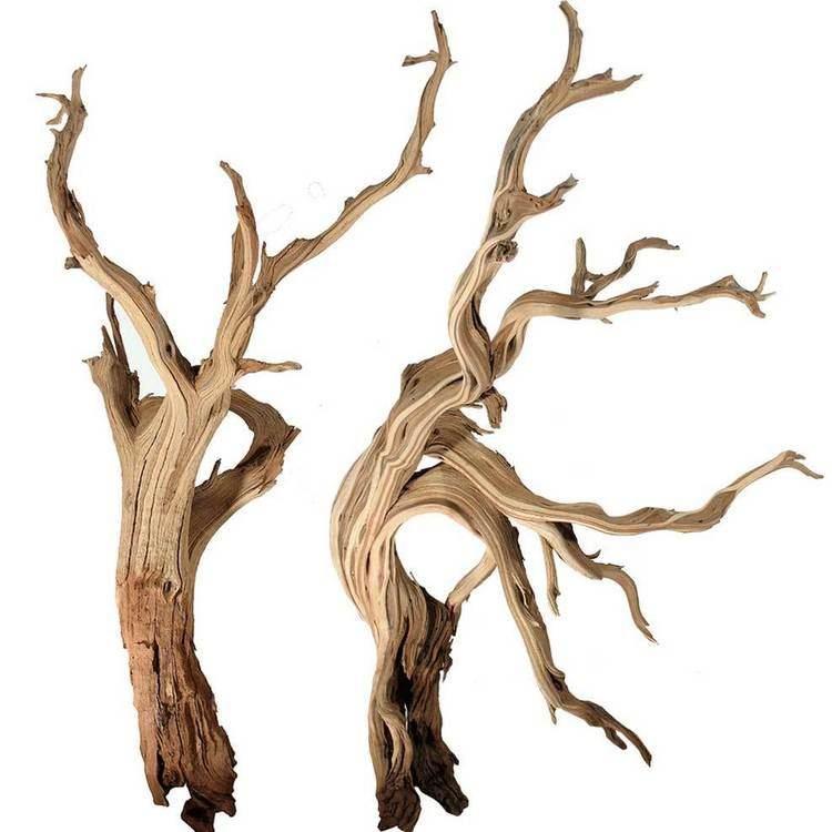 Driftwood Driftwood HotelR