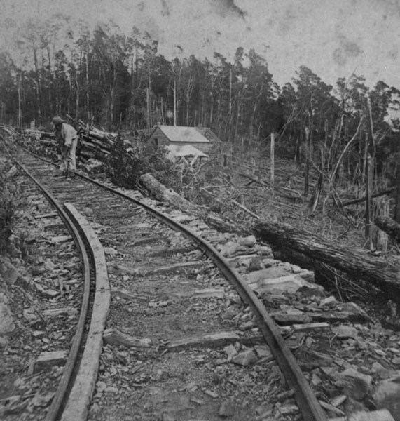 Dun Mountain Railway DunMountainRailwayC2634jpg