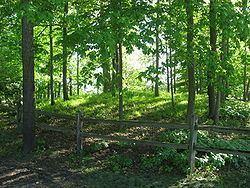 Dunns Pond Mound httpsuploadwikimediaorgwikipediacommonsthu