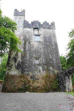 Dunsandle Castle Dunsandle Castle and Woods Athenry Ireland Top Tips Before You