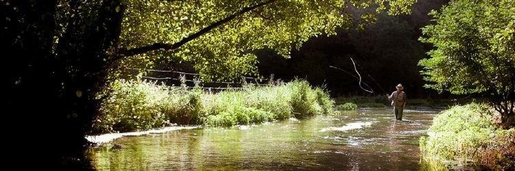 Durdent (river) AAPPMA de la Valle de la Durdent