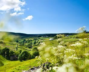 Durham Dales Explore the Durham Dales Official visitor information website for