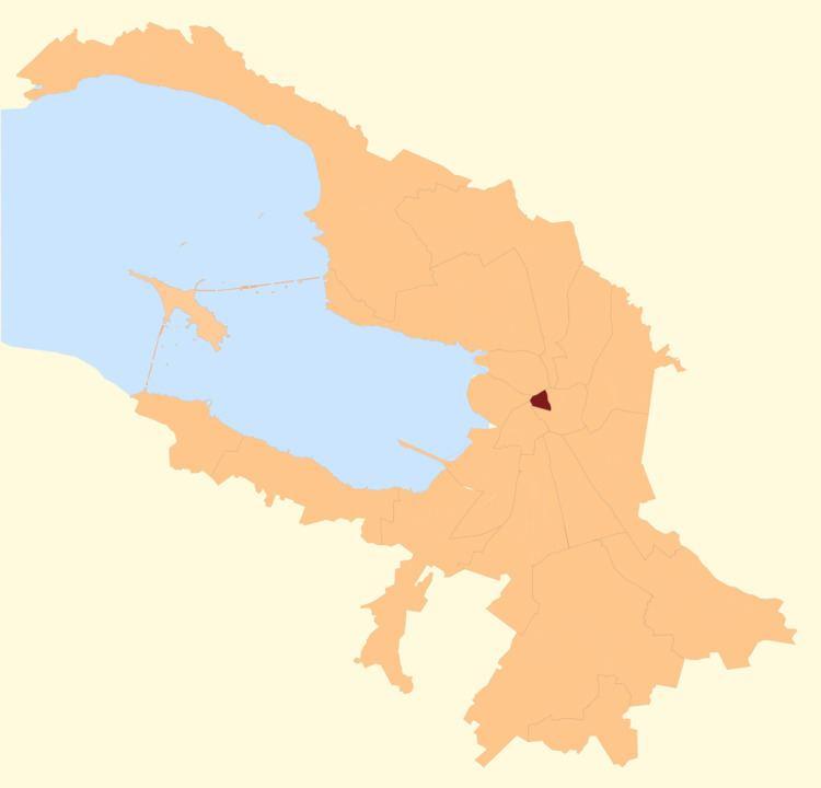 Dvortsovy Municipal Okrug