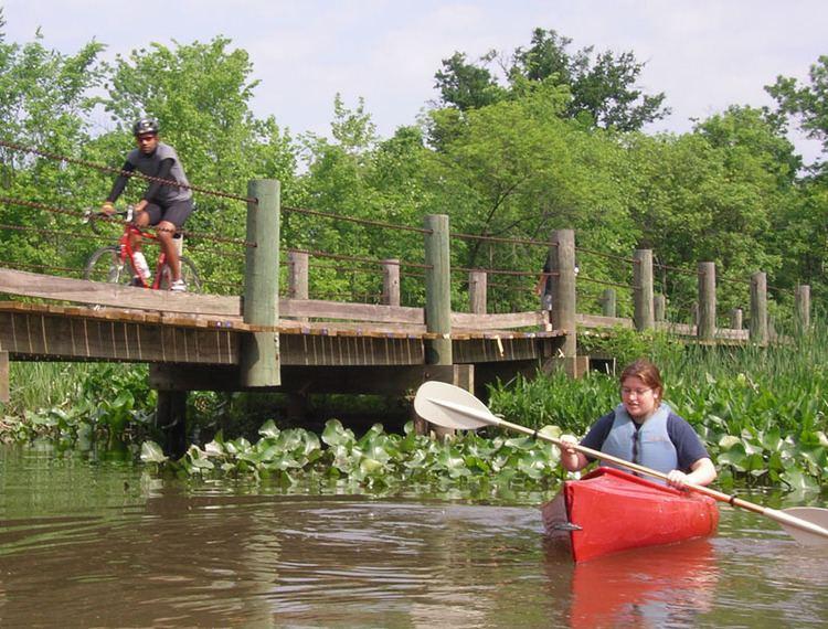Dyke Marsh wwwburnhamvirginiacompaddlepotomac2jpg