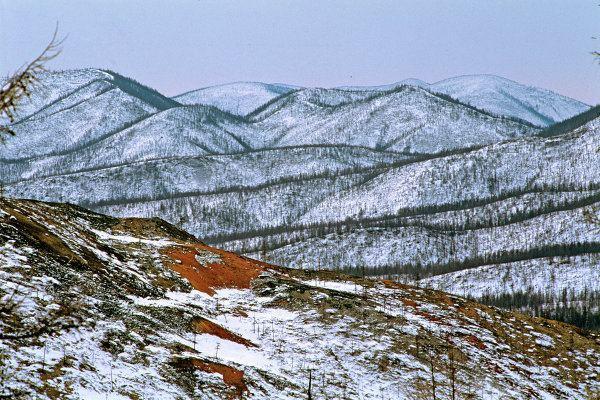 Dzhugdzhur Mountains Amur Tigers Lotuses and Other Wonders of Russia39s Khabarovsk Region