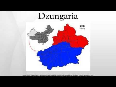 Dzungaria Dzungaria YouTube