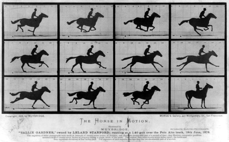 Eadweard Muybridge Eadweard Muybridge Wikipedia the free encyclopedia