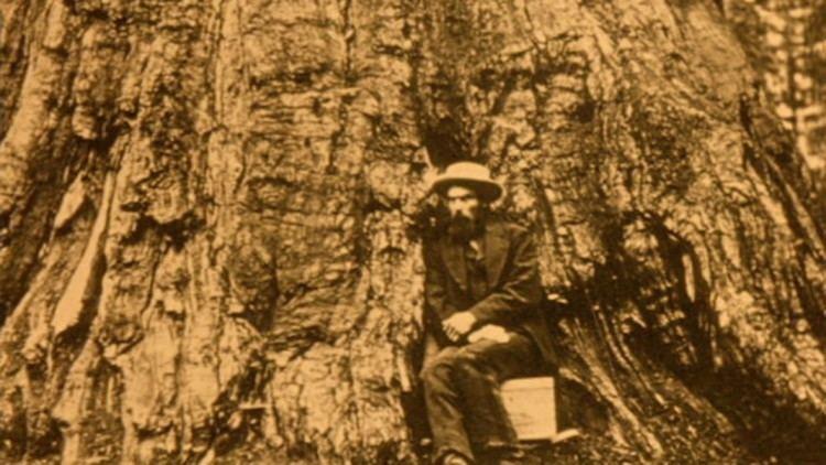 Eadweard Muybridge, Zoopraxographer Eadweard Muybridge Zoopraxographer Film Society of Lincoln Center