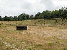 Eartham Pit, Boxgrove httpsuploadwikimediaorgwikipediacommonsthu