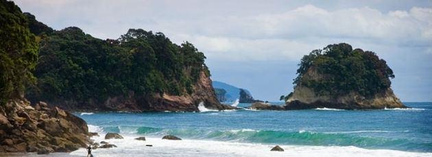 East Auckland wwwnzonlineorgnzimagesuploadedregions132875
