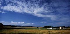 Echallens Beautiful Landscapes of Echallens