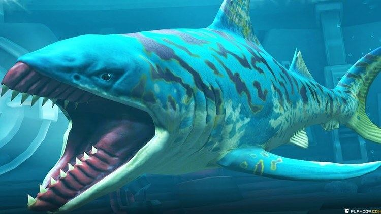 Edestus NEW Lagoon Species Shark The EDESTUS SEA MONSTER Jurassic World