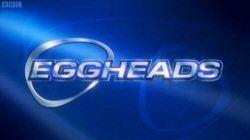 Eggheads (TV series) Eggheads TV series Wikipedia