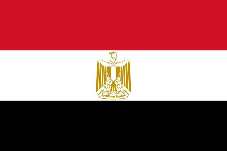 Egypt at the 2013 World Aquatics Championships