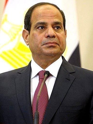 Egyptian presidential election, 2014
