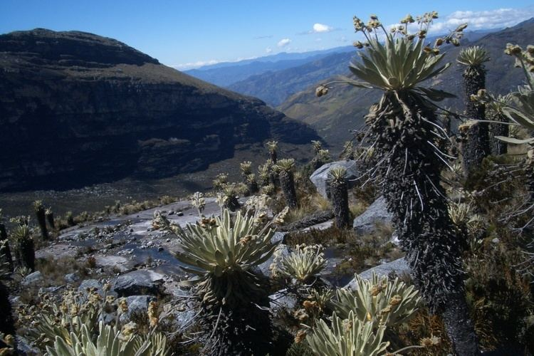 El Cocuy National Park httpsbogotaeatsanddrinksfileswordpresscom20