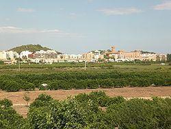 El Puig httpsuploadwikimediaorgwikipediacommonsthu