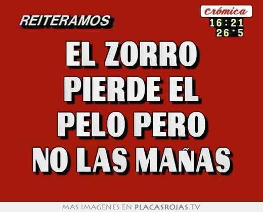 El Zorro pierde el pelo El zorro pierde el pelo pero no las maas Placas Rojas TV