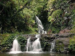 Elabana Falls httpsuploadwikimediaorgwikipediacommonsthu