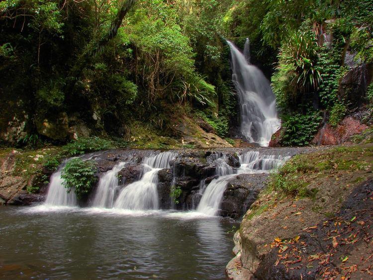 Elabana Falls Elabana Falls Australian rainforest One of the most photo Flickr
