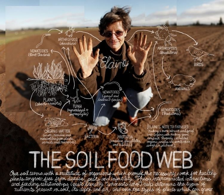 Elaine Ingham An Introduction to the Soil Foodweb Double CD by Dr