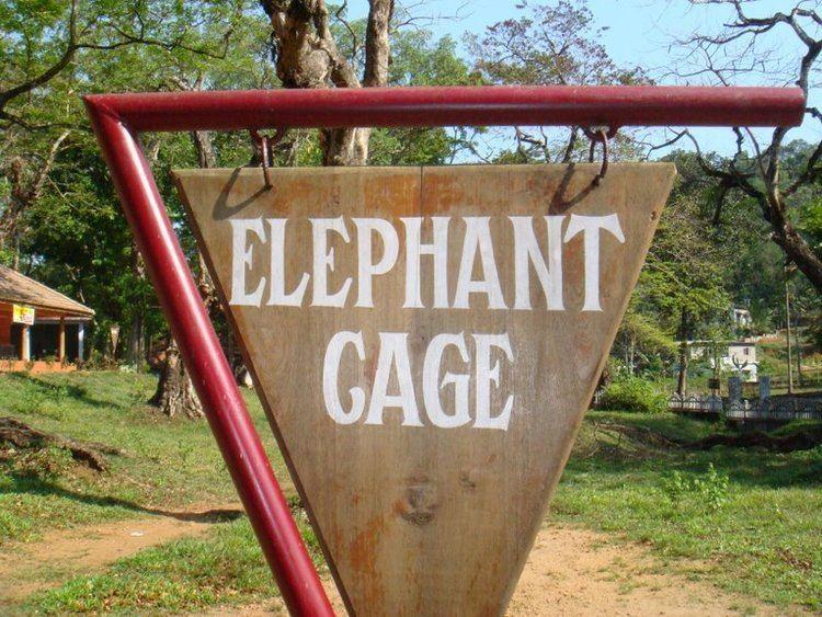 Elephant Training Center, Konni