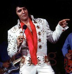 Elvis on Tour Elvisforeveryone
