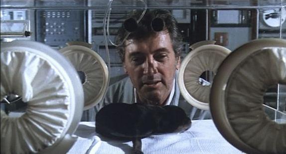 Embryo (1976 film) movie scenes