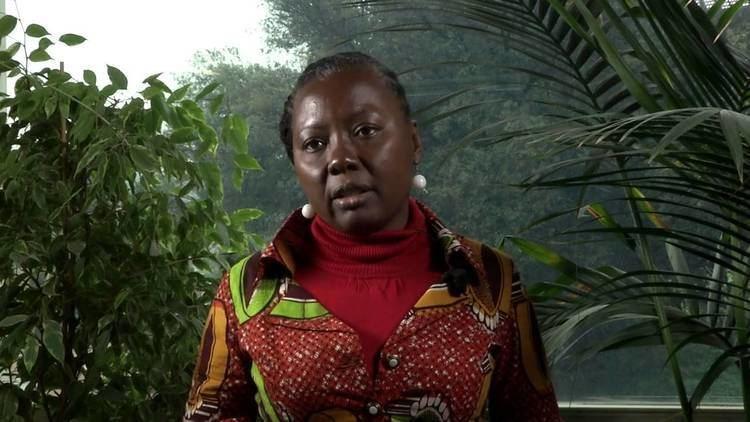 Emelia Arthur Emelia Arthur Government of Ghana YouTube