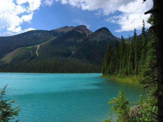 Emerald Lake (British Columbia) httpsmediacdntripadvisorcommediaphotos01