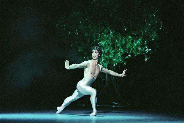 Emmanuel Thibault Dansomanie