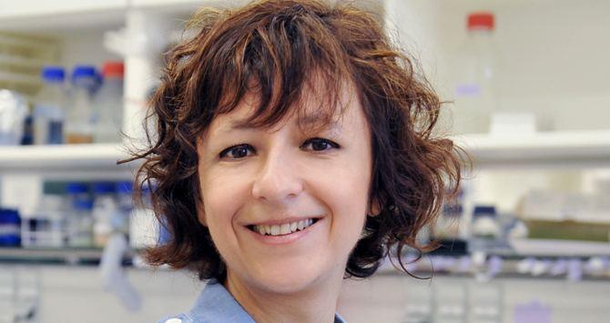 Emmanuelle Charpentier The woman with the DNA scissors HelmholtzGemeinschaft