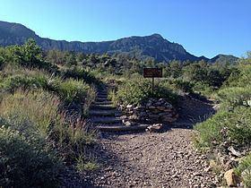 Emory Peak httpsuploadwikimediaorgwikipediacommonsthu