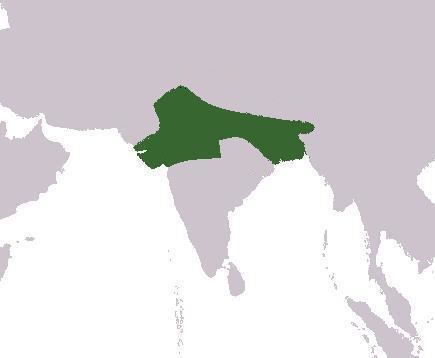 Empire of Harsha