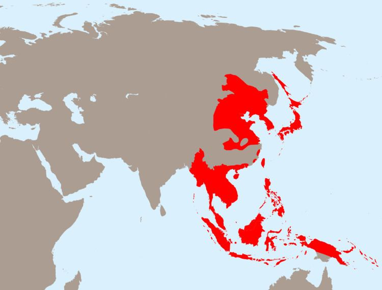 Empire of Japan Empire of Japan at its greatest extent 1942 2000x1522 MapPorn