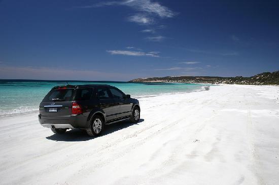 Emu Bay, South Australia httpsmediacdntripadvisorcommediaphotos01