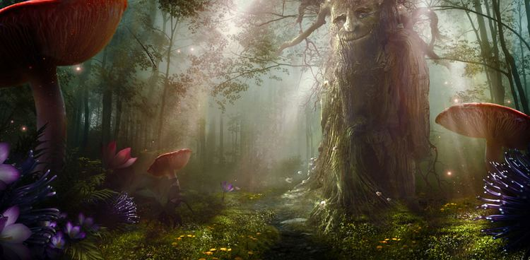 Enchanted forest 1000 images about Enchanted Forest on Pinterest Nature Magic