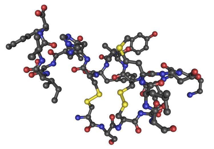 Endothelin
