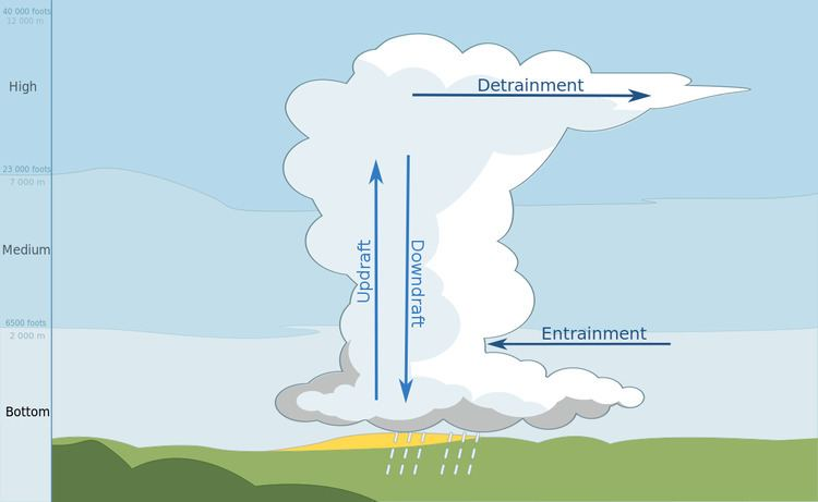 Entrainment (meteorology)
